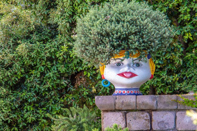 Plant growing out of pot resembling woman's head